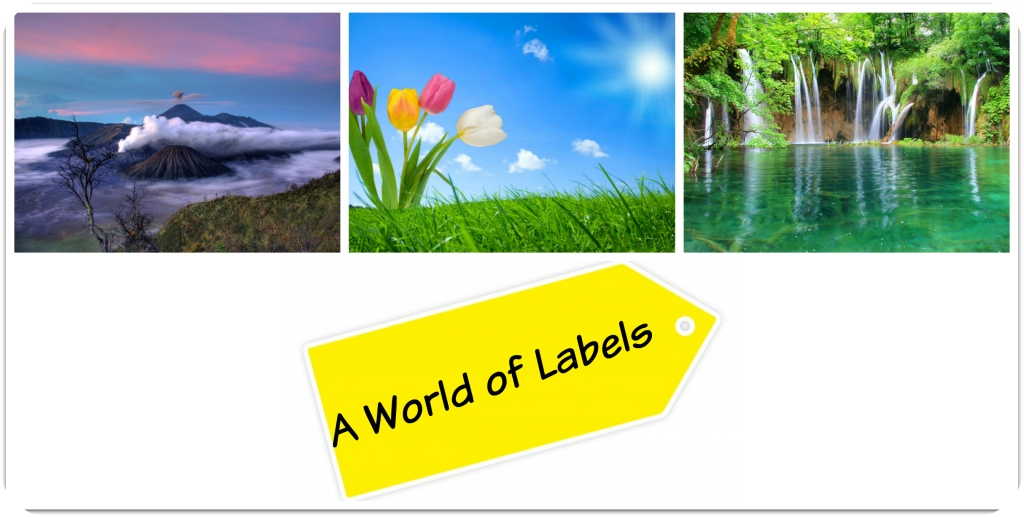 A world of labels
